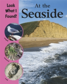 Look What I Found!: At The Seaside, Paperback / softback Book