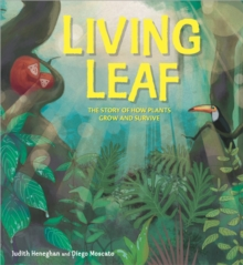 Plant Life: Living Leaf : The Story of How Plants Grow and Survive, Hardback Book