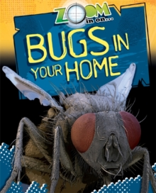 Zoom in On: Bugs in your Home, Paperback Book