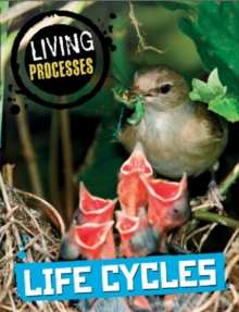 Living Processes: Life Cycles, Paperback Book