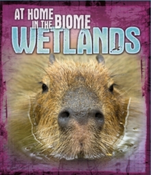 At Home in the Biome: Wetlands, Paperback / softback Book