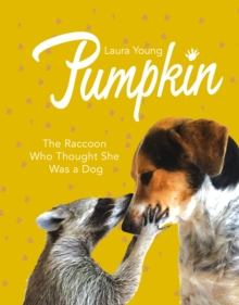 Pumpkin: The Raccoon Who Thought She Was a Dog, Hardback Book