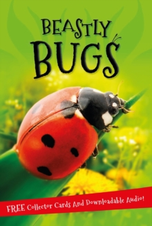 It's All About... Beastly Bugs, Paperback Book