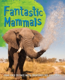 Fast Facts! Fantastic Mammals, Paperback / softback Book