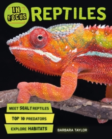 In Focus: Reptiles, Paperback Book