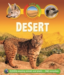 Life Cycles: Desert, Paperback / softback Book