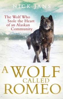 A Wolf Called Romeo, Paperback / softback Book