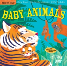 Indestructibles: Baby Animals, Paperback / softback Book