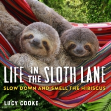 Life In The Sloth Lane : Slow Down and Smell the Hibiscus, Hardback Book
