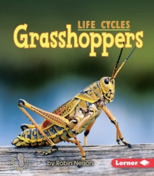Grasshoppers, PDF eBook