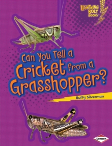 Can You Tell a Cricket from a Grasshopper?, PDF eBook