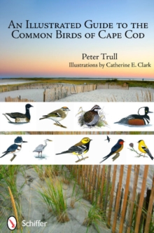 An Illustrated Guide to the Common Birds of Cape Cod, Paperback Book