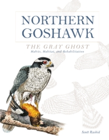 Northern Goshawk, the Gray Ghost : Habits, Habitat, and Rehabilitation, Hardback Book