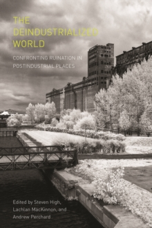 The Deindustrialized World : Confronting Ruination in Postindustrial Places, Paperback Book
