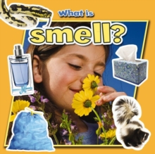 What is Smell?, Paperback Book
