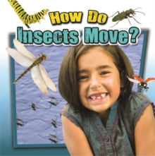 How Do Insects Move?, Paperback / softback Book