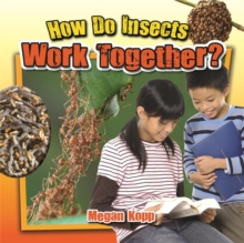 How Do Insects Work Together?, Paperback / softback Book