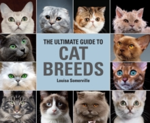 The Ultimate Guide To Cat Breeds : A useful means of identifying the cat breeds of the world and how to care for them, Hardback Book