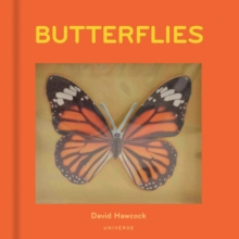 Butterflies, Hardback Book
