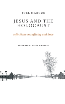Jesus and the Holocaust : Reflections on Suffering and Hope, Paperback Book