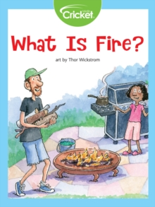 What Is Fire?, PDF eBook