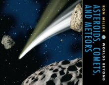 Asteroids, Comets, and Meteors, PDF eBook