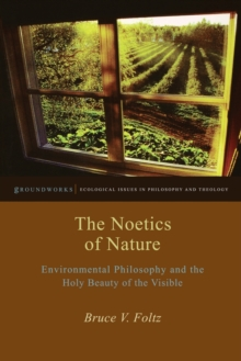 The Noetics of Nature : Environmental Philosophy and the Holy Beauty of the Visible, Paperback Book