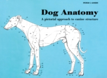 Dog Anatomy : A Pictorial Approach to Canine Structure, Paperback / softback Book