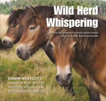 Wild Herd Whispering : How the enigmatic Exmoor ponies reveal what is in their hearts and minds, Hardback Book