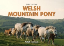 Spirit of the Welsh Mountain Pony, Hardback Book