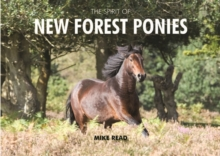 The Spirit of New Forest Ponies, Hardback Book