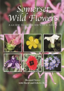 Somerset Wild Flowers : A Guide to Their Identification, Hardback Book