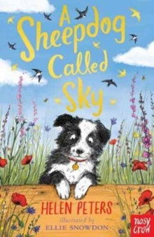 A Sheepdog Called Sky, Paperback Book