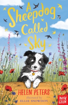 A Sheepdog Called Sky, EPUB eBook