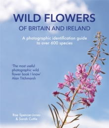 Wild Flowers of Britain and Ireland, Paperback / softback Book