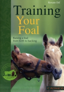 Training Your Foal : Raising a Foal from Birth to Backing, Paperback Book