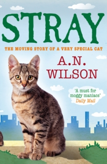 Stray, Paperback Book