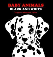 Baby Animals Black And White, Board book Book