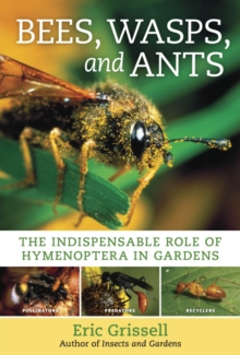 Bees, Wasps, and Ants, Hardback Book