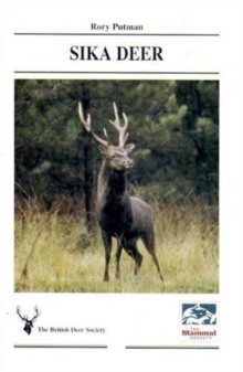 Sika Deer, Paperback / softback Book