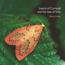 Insects of Cornwall and the Isles of Scilly, Paperback Book
