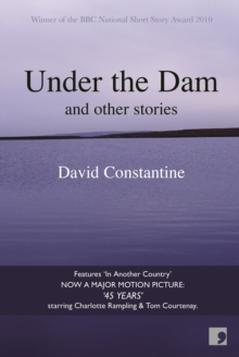 Under the Dam, Paperback Book