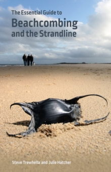 The Essential Guide to Beachcombing and the Strandline, Paperback / softback Book
