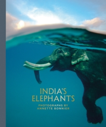 India's Elephants, Hardback Book