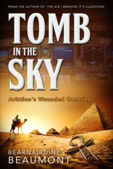 Tomb in the Sky, Paperback / softback Book