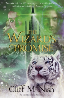 The Wizard's Promise, Paperback Book