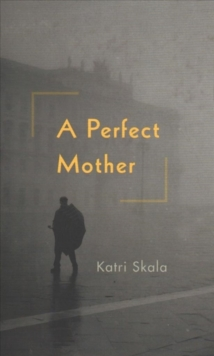 A Perfect Mother, Hardback Book