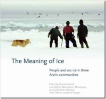The Meaning of Ice, Paperback Book
