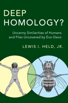 Deep Homology? : Uncanny Similarities of Humans and Flies Uncovered by Evo-Devo, Hardback Book