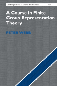 A Course in Finite Group Representation Theory, Hardback Book